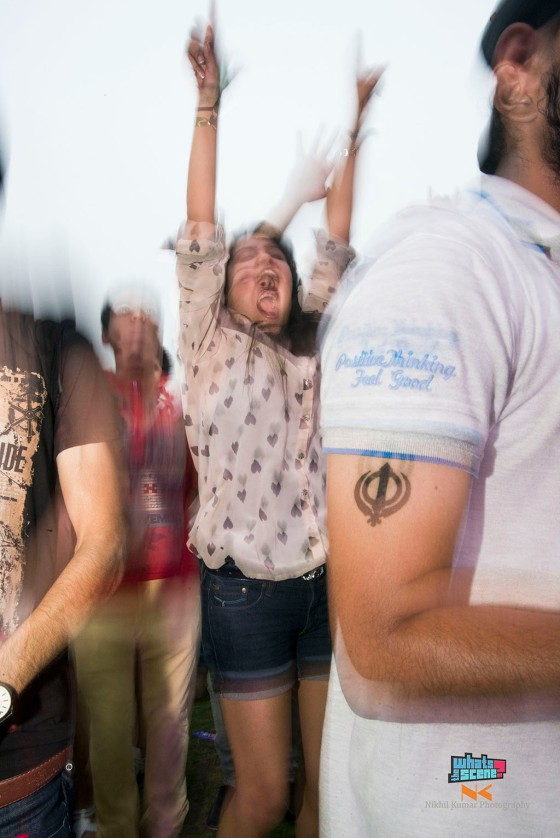 Sunburn festival noida 2013 (10)