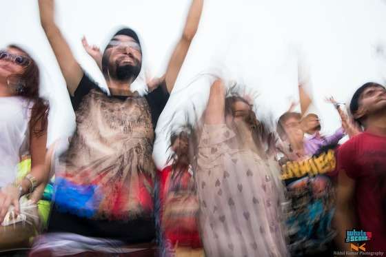 Sunburn festival noida 2013 (11)