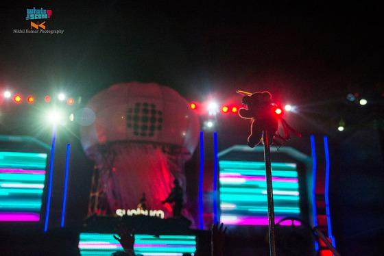 Sunburn festival noida 2013 (17)