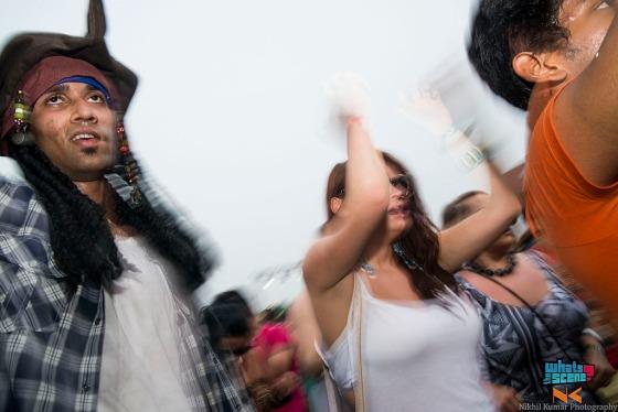 Sunburn festival noida 2013 (9)