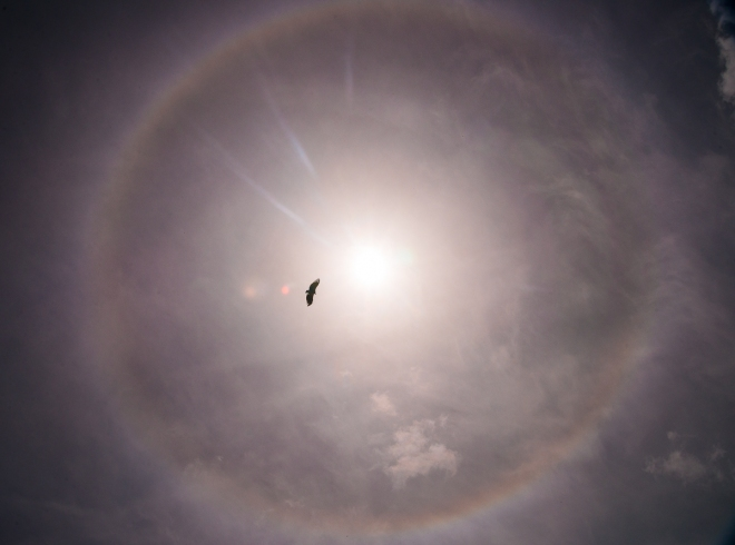 22* Halo around the sun